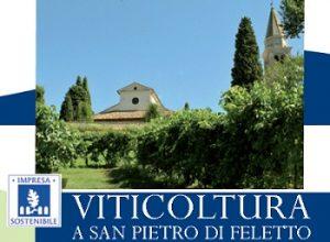 viticoltura2014
