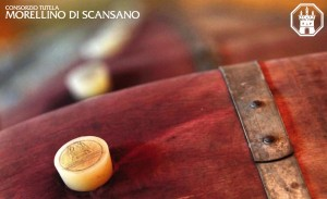 Immagine tratta dal sito del Consorzio Tutela Morellino di Scansano