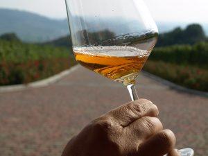 Strada del vino Soave particolare vino