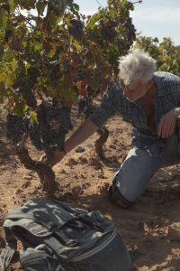 Marco Simonit ai Signori del Vino (3)