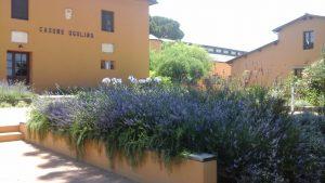 Casone Ugolino_Location di T-Wine domenica 24 aprile