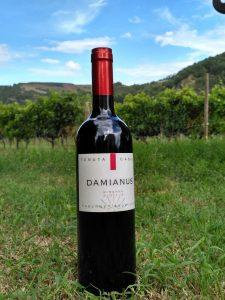 damianus-in-vigna