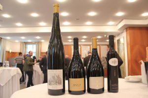 Top of Vini Alto Adige - i 4 piú premiati dalle guide 2016
